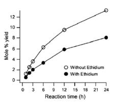 with/without ethidium