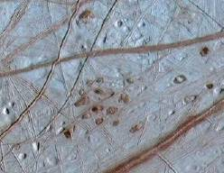 Ruddy Freckles on Europa