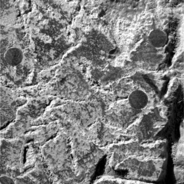 erased fossil on Mars